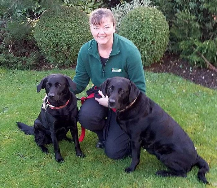 Gina Hinsley, Dog Obedience Trainer & Behavioural Therapist for Bath, Bristol, Gloucester, Newport & East Valleys, Swindon