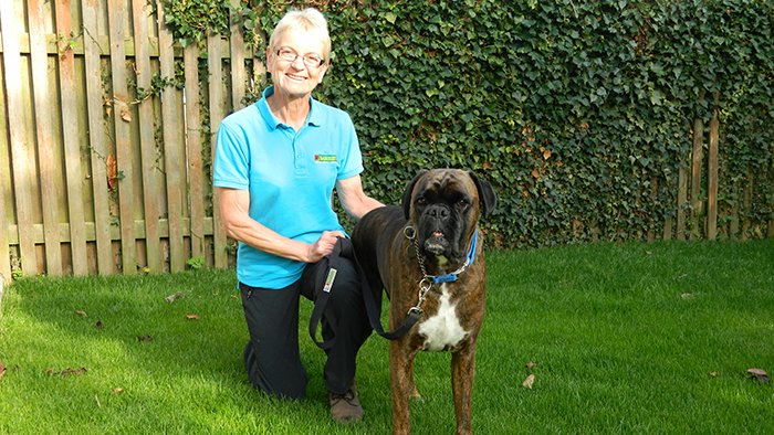 Linda Dodsworth, Bark Busters Dog Trainer