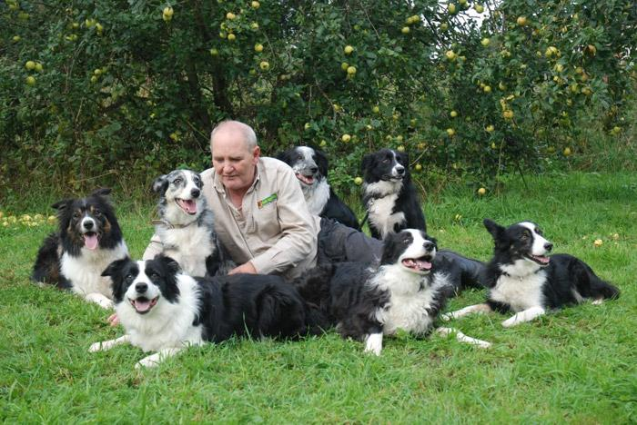 Neil Price, Dog Obedience Trainer & Behavioural Therapist for Blackburn, Warrington, Runcorn, St Helens & Widnes