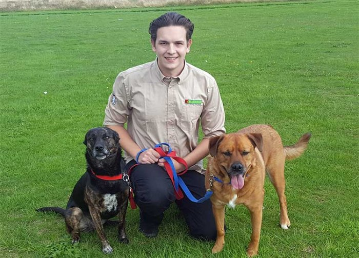Ryan Busst, Dog Obedience Trainer & Behavioural Therapist for