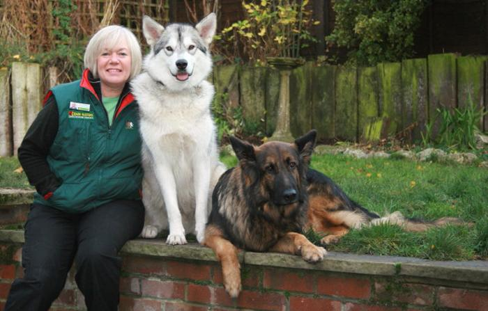 Tina Edwards, Dog Obedience Trainer & Behavioural Therapist for Canterbury, Maidstone, Rochester & Gillingham, Tunbridge Wells & Sevenoaks