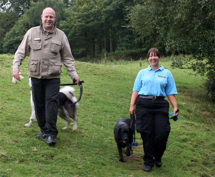 Dog socialising and Community Dog Walks