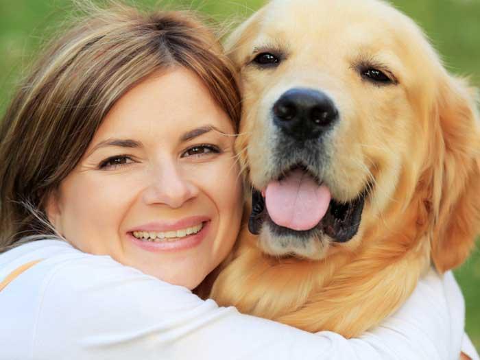 Bark Busters Dog Training Method