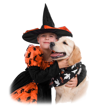 Halloween Dog Training Safety Tips