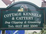 Visit www.cottagekennelsandcattery.co.uk
